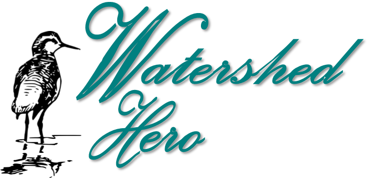 Nominate a Watershed Hero Today!