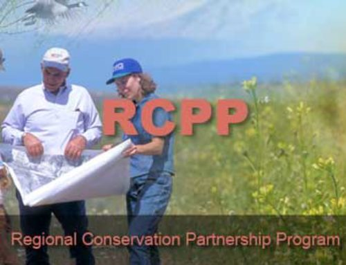 USDA Announces $252 Million Available  for Regional Conservation Partnership Program