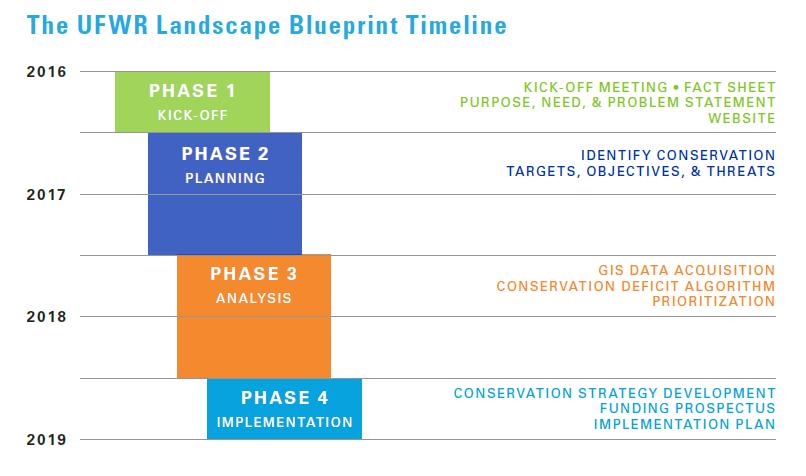 Landscape Blueprint Timeline