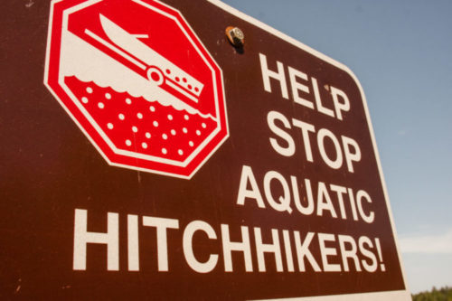 Landing Blitz 2017: Stop Aquatic Invasive Species in their Tracks June 30th to July 4th!