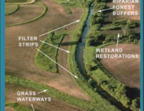Great Lakes Restoration Initiative – Plum & Kankapot Updates