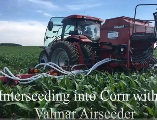 Corn Cultivator + AirSeeder = Cover Crop Jumpstart