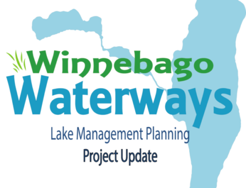 Lake Management Planning – November Update