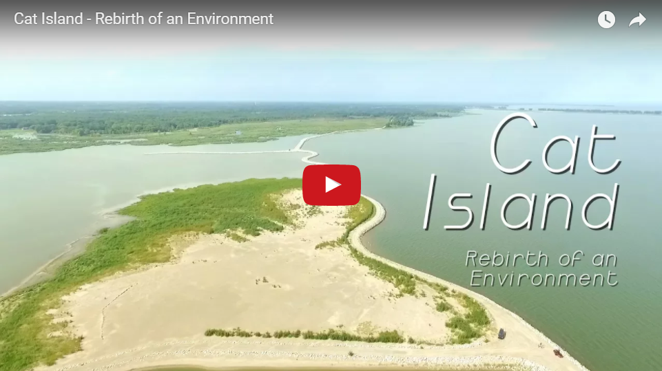 Video Showcases Efforts to Restore the Cat Island Chain