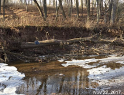 Sediment & Phosphorus Reductions through Streambank Stabilization