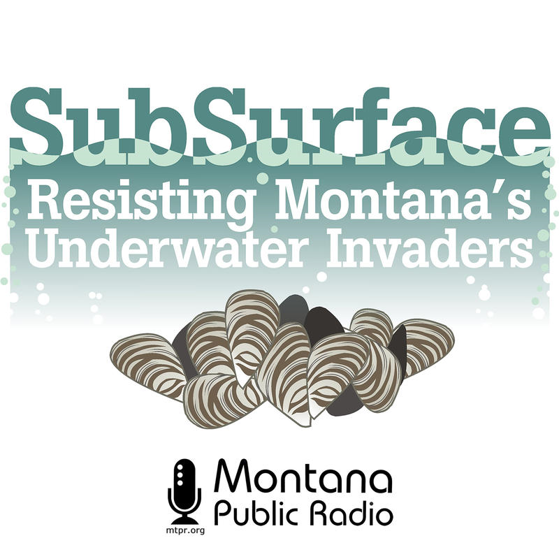 SubSurface: Resisting Montana's Underwater Invaders
