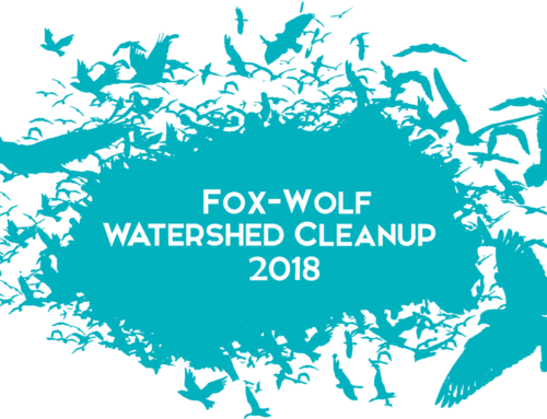 Registration Open for Fox-Wolf Watershed Cleanup!